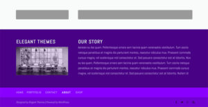 Sample footer from Divi Blog using Footer Customizer